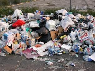 'En riesgo Centro, por problema de basura': Biólogos