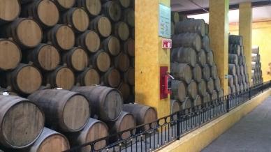 Venta de tequila aumenta 17.6 por ciento en México