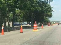 Derriban decenas de árboles en carretera