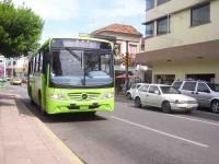 Control vial y peatonal por 'Grito'