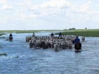 Pega inundación a Jonuta