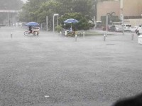 Anuncian más lluvias persistentes