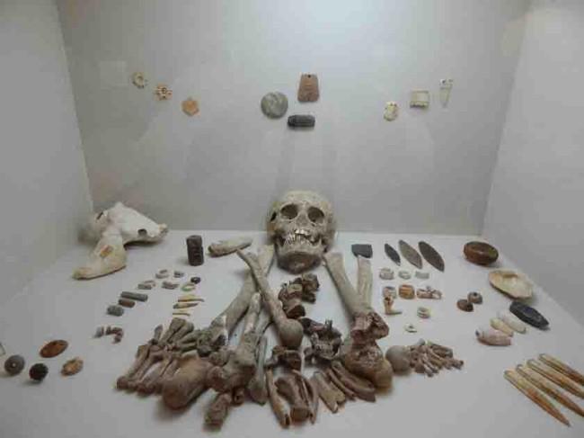 Exhiben osamenta maya