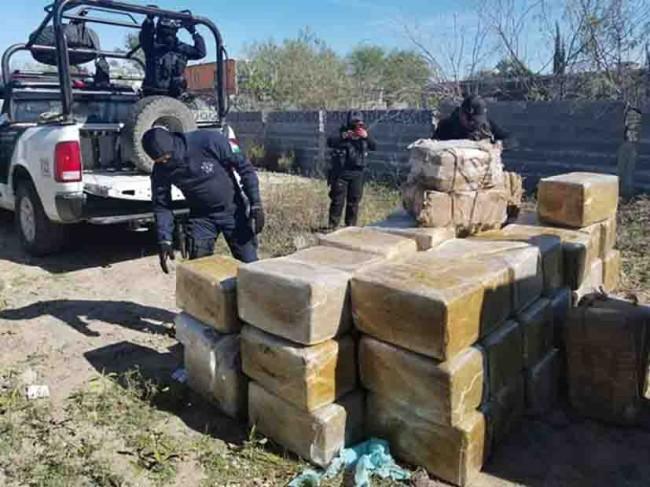 Decomisan más de 500 kilos de mariguana