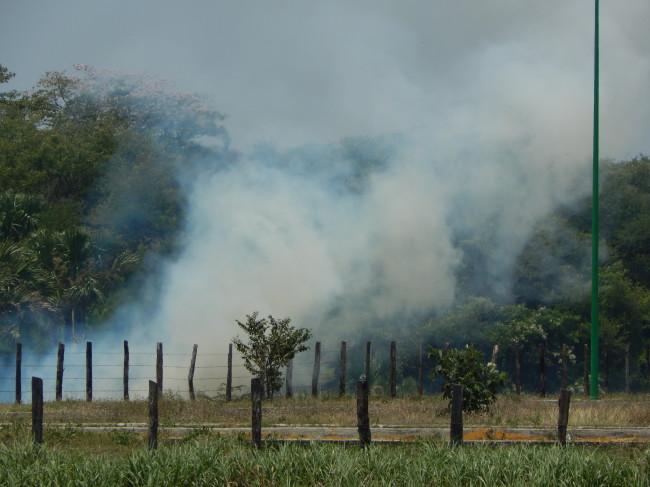 Exhorta Sagarpa efectuar  quemas con responsabilidad
