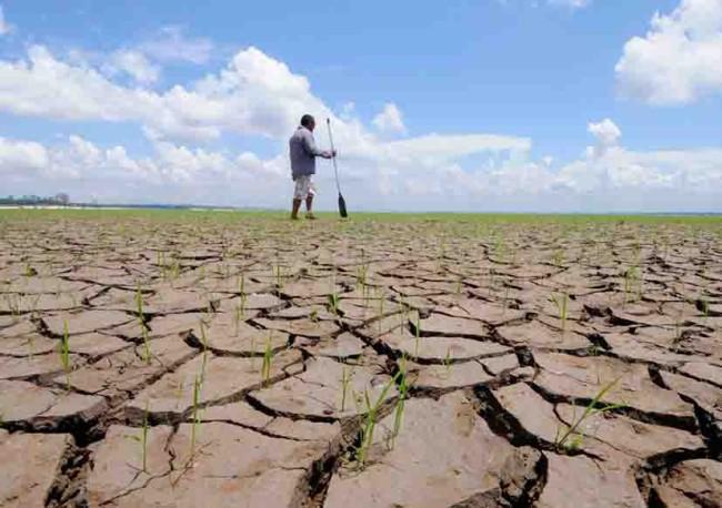 Vendrá difícil la sequía este año