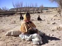 Catástrofe por sequía