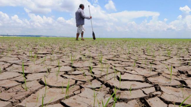 Causará estragos fenómeno  del 'Niño' en el agro jonuteco