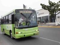 Investigar la quiebra  financiera del TransBus