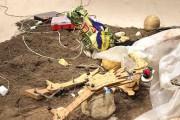 """El MoMA  exhibe  """"arte robótico"""""""
