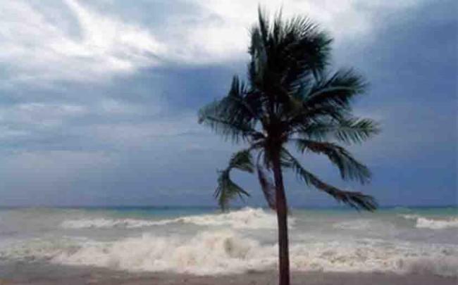 """Beryl"" se convierte  en huracán"