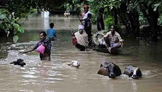 Lluvias inundan la India