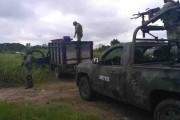 Asegura el Ejército mexicano  combustible  ilícito  en Reforma