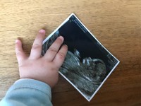 Zuria Vega ¡embarazada!