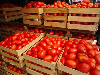 Por las nubes el precio del tomate