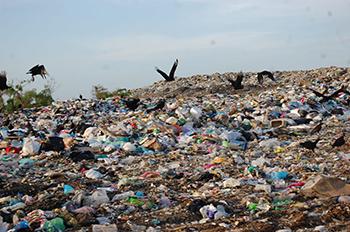 Ordenan a alcaldesa  cerrar el basurero