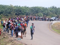 Descartan plan para detener ingreso de migrantes a México