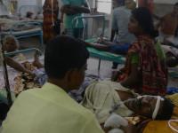 Brote de encefalitis cobra 43 muertes