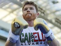 'Canelo' Álvarez no  peleará en septiembre