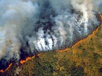 Brasil sin recursos  para frenar incendios
