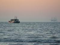 Ruido de buques ahuyenta los peces