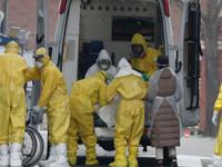 Lucha OMS contra coronavirus