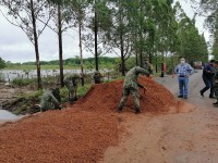 "Cuantiosos daños dejó ""Cristóbal"" en Balancán"