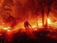 Letal el incendio en California