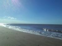Alerta Salud por presencia de Marea Roja en Playa Miramar